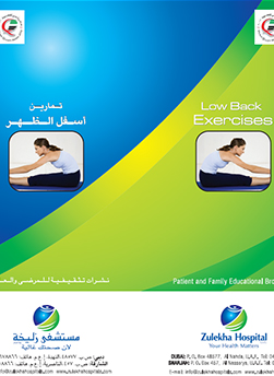 https://zulekhahospitals.com/uploads/leaflets_cover/26Low-Back.jpg